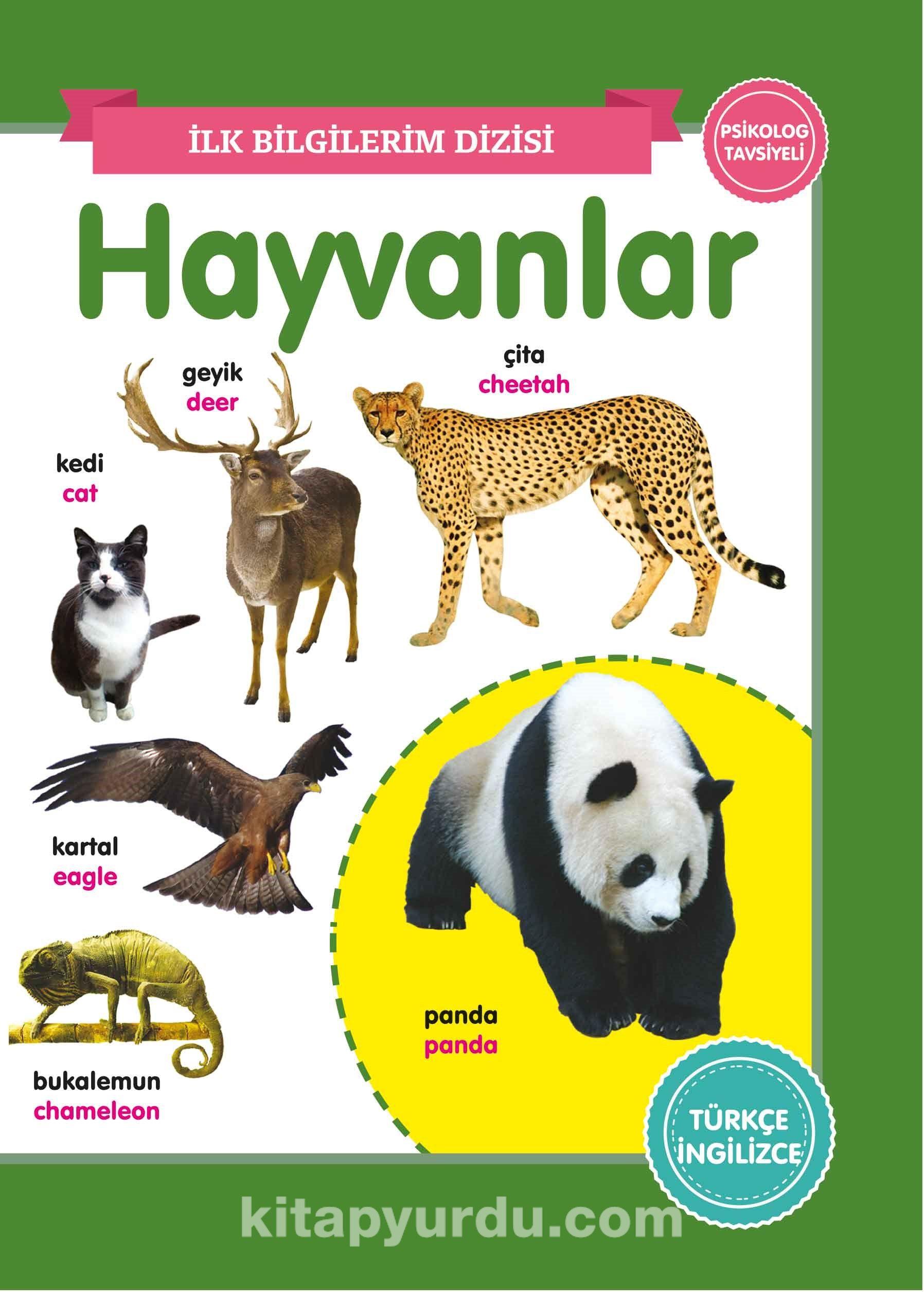 Hayvanlar / İlk Bilgilerim Dizisi PDF Kitap İndir