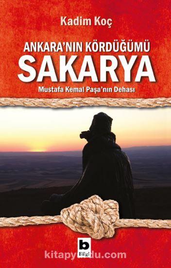 Ankara'nın Kördüğümü Sakarya PDF Kitap İndir